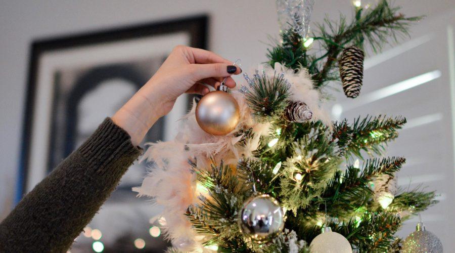 Weihnachtsbaum Eigenheim verischern